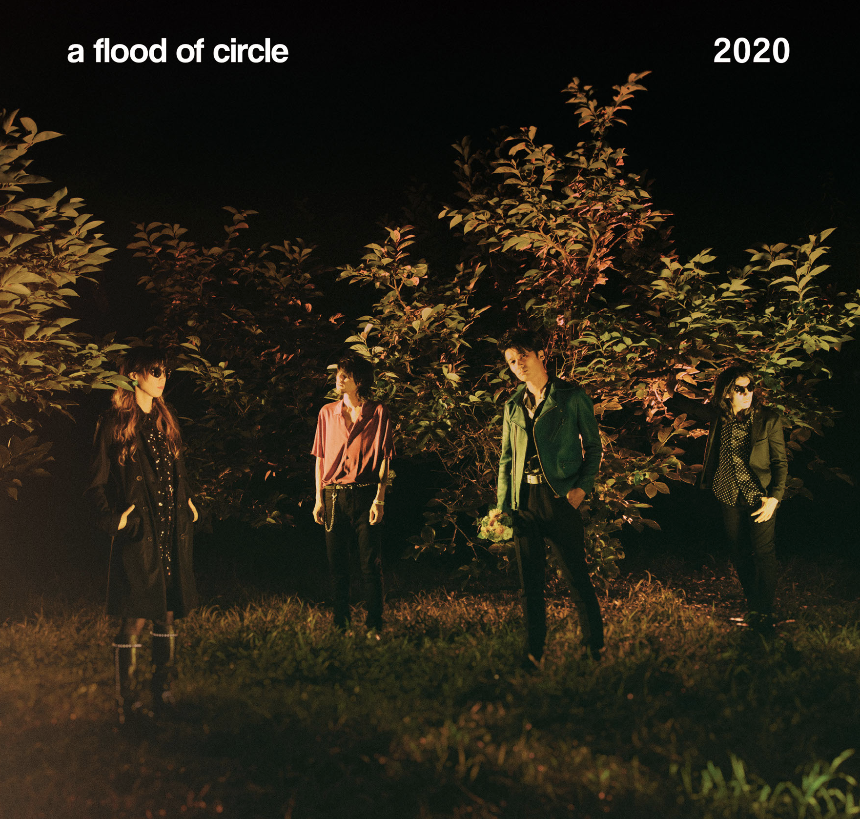 a flood of circle「2020」